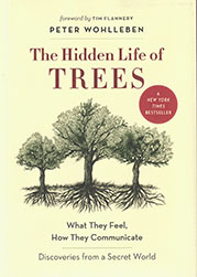 The Hidden Life of Trees $29.00